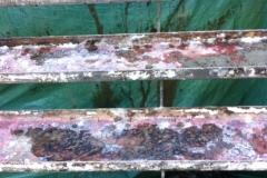 projet_balcon-bois-beton-quartier-rosemont_003-min